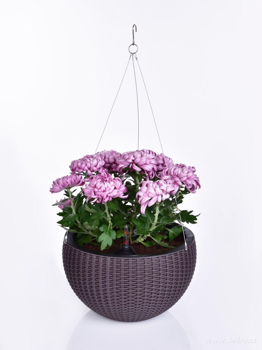 Samozavlažovací XL závesný kvetináč RATAN AQUARIUS
