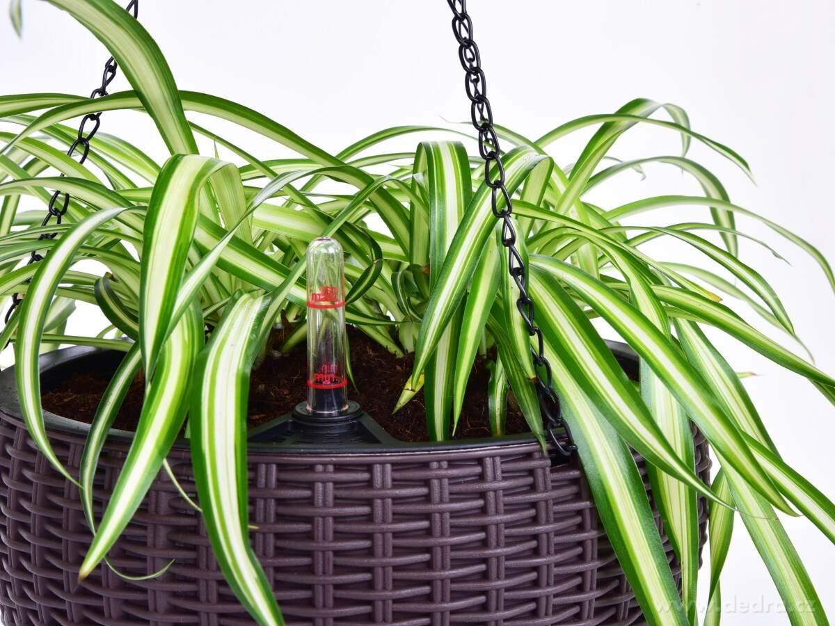 Samozavlažovací závesný kvetináč RATAN AQUARIUS
